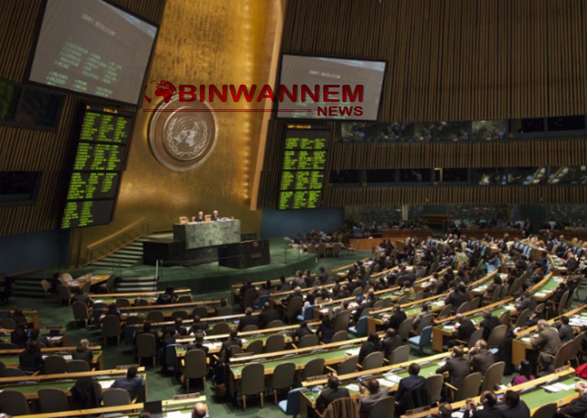 Nigerian insecurity needs necessary consideration – UN