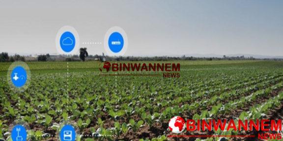 Obinwannnem News