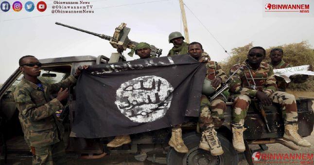 We kidnapped 523 students from Katsina, Boko Haram opens up