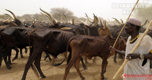ESN 1- 0 Umahi Miyetti Allah, Fulani herdsmen flee Ebonyi State