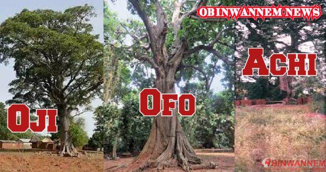 The sacredness of trees in Igboland – Achara, Ihechiowa; Ahiara, Mbaise; Uga, Aguata
