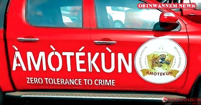 Amotekun operatives seize 100 cows, arrest 9 herders in Ondo