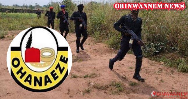 Ohaneze begs ESN's support in taming killers herdsmen
